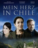 herz in chile